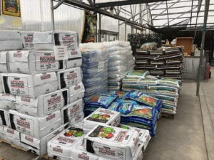 Vegetable seeds and plants supply store in Denver, CO