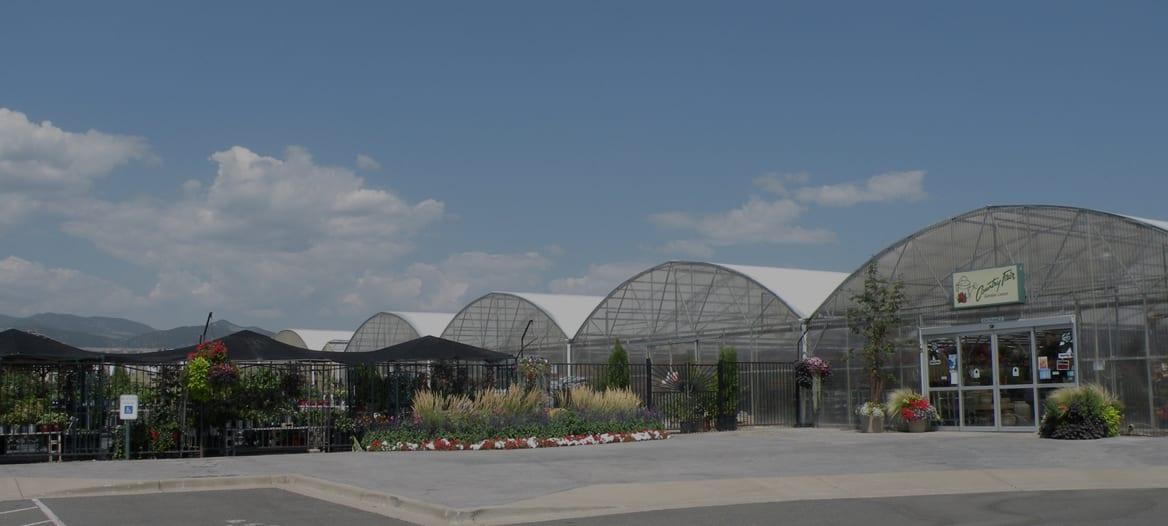 Denver, CO Plant Store