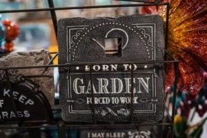 Colorado Winter Gardening Tips